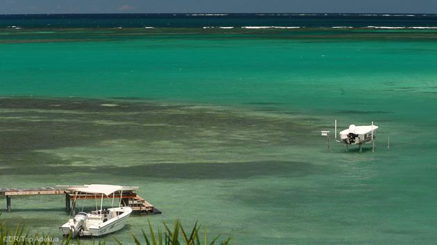 Des vacances kitesurf de rêve en Martinique