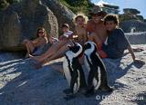 Cape Town : du kite mais pas que ça - voyages adékua