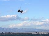 Mieux connaître les spots de kite du Delta de l'Èbre avec votre guide kite - voyages adékua