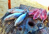 Lagoinha, une destination kite à vivre à la brésilienne - voyages adékua