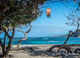 La vie à Cabarete et en République Dominicaine - voyages adékua