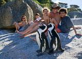 Jours 4 à 7 : L'aventure familiale kite et découverte à Cape Town continue… - voyages adékua
