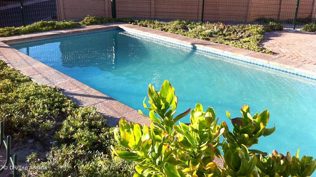 la pisicne avec votre logement à Cape Town