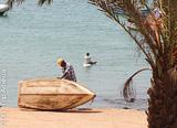 Boa Vista, des plages et spots d'une beauté à couper le souffle  - voyages adékua