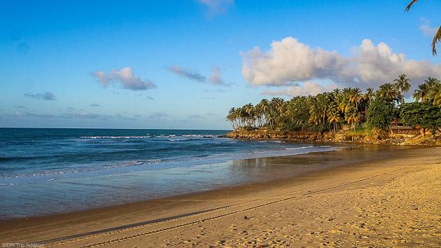 Découvrez les plus belles plages de Taiba au Brésil