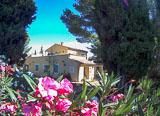 Dormez en pleine nature, au calme au milieu des vignes de l'Hérault - voyages adékua