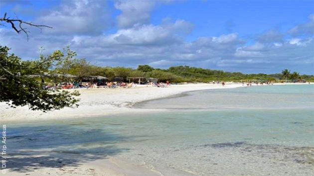 Votre hébergement face à la plage vous permet de profiter à fond de votre séjour kitesurf à Cuba