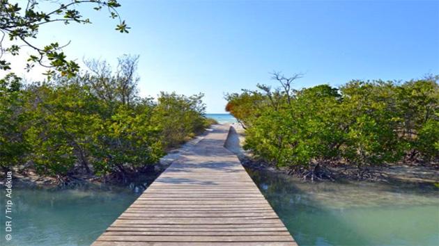Découvrez Cayo Coco et ses plages splendides pendant ce séjour kitesurf à Cuba