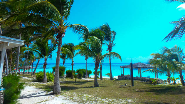 Votre hébergement en pension complète face au spot, sur la plage de sable rose de Cat Island