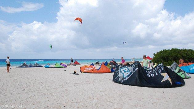 Profitez des plus beaux spots de kite des Caraïbes pendant votre séjour à Bonaire