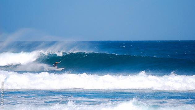 Surf dans les vagues des spots de Fuerteventura