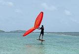 Découvrez le wingfoil en Martinique - voyages adékua