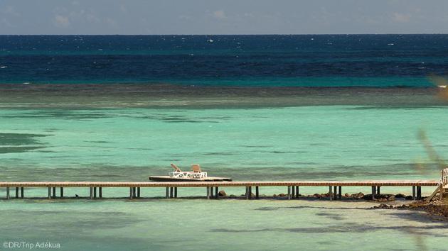 Profitez des meilleurs spots et des plus belles plages de l'île de la Martinique